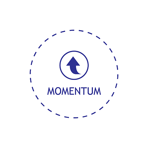 i2i - Success Blueprint - Momentum